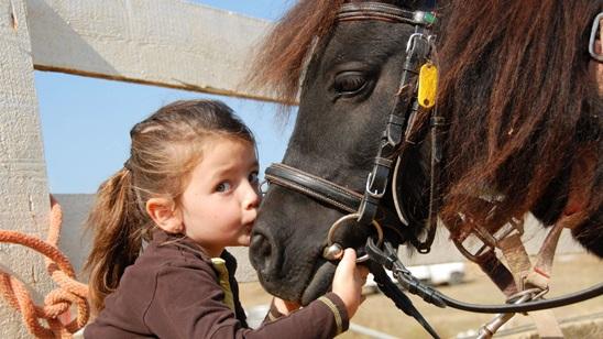 Mala škola jahanja i nege i brige o ponijima za decu do 7 godina!