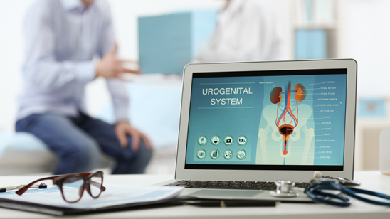 Urološki pregled, palpatorni pregled prostate i testisa i ultrazvuk urotrakta!